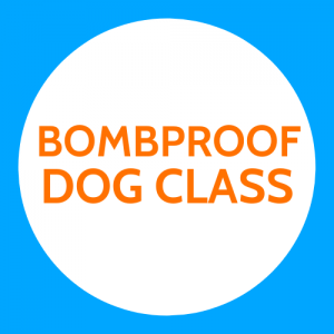 Bombproof Dog Class