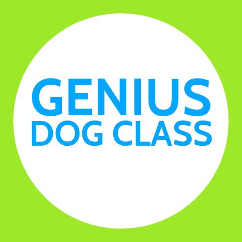 Genius Dog Class