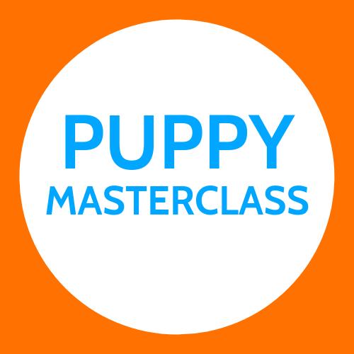 Puppy Masterclass