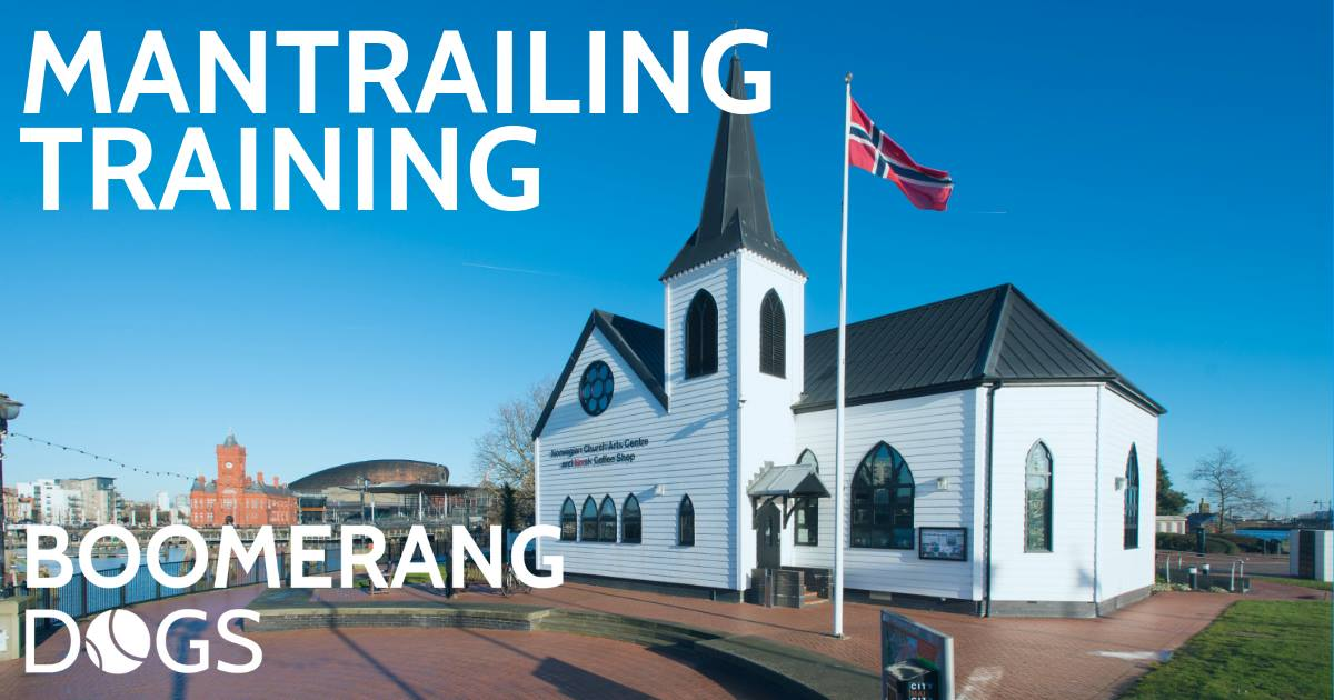 Mantrailing at Norwegian Church Cardiff Bay